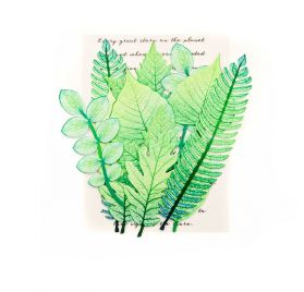 12 Feuilles 'Prima - Leaf embellishments' Mountain Pine