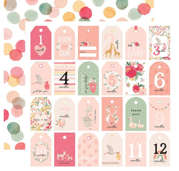 Papier double 30x30 ' Echo Park Paper - Welcome Baby Girl' Girl Tags